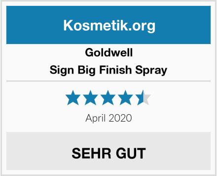 Goldwell Sign Big Finish Spray Test