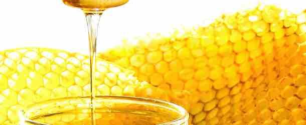 Der Wirkstoff der Bienen Cera Alba