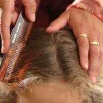 Kopfläuse – Lästig, aber kontrollierbar