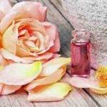 Pflegendes Rosenöl fürs Gesicht selber machen